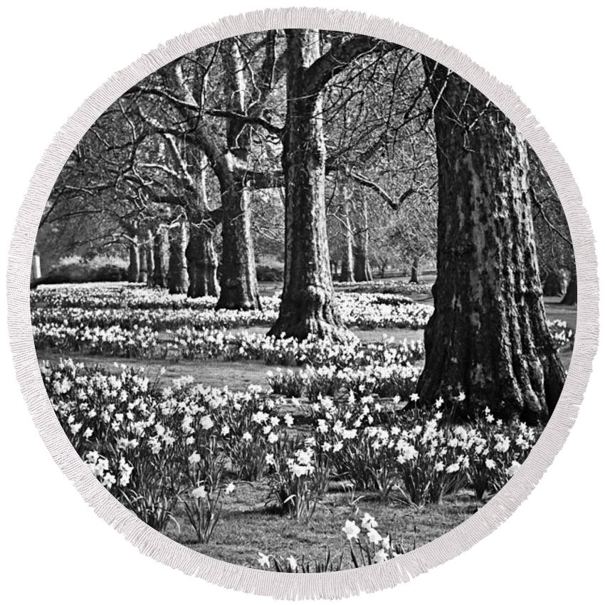 Daffodils Round Beach Towel featuring the photograph Daffodils In St. James's Park by Elena Elisseeva