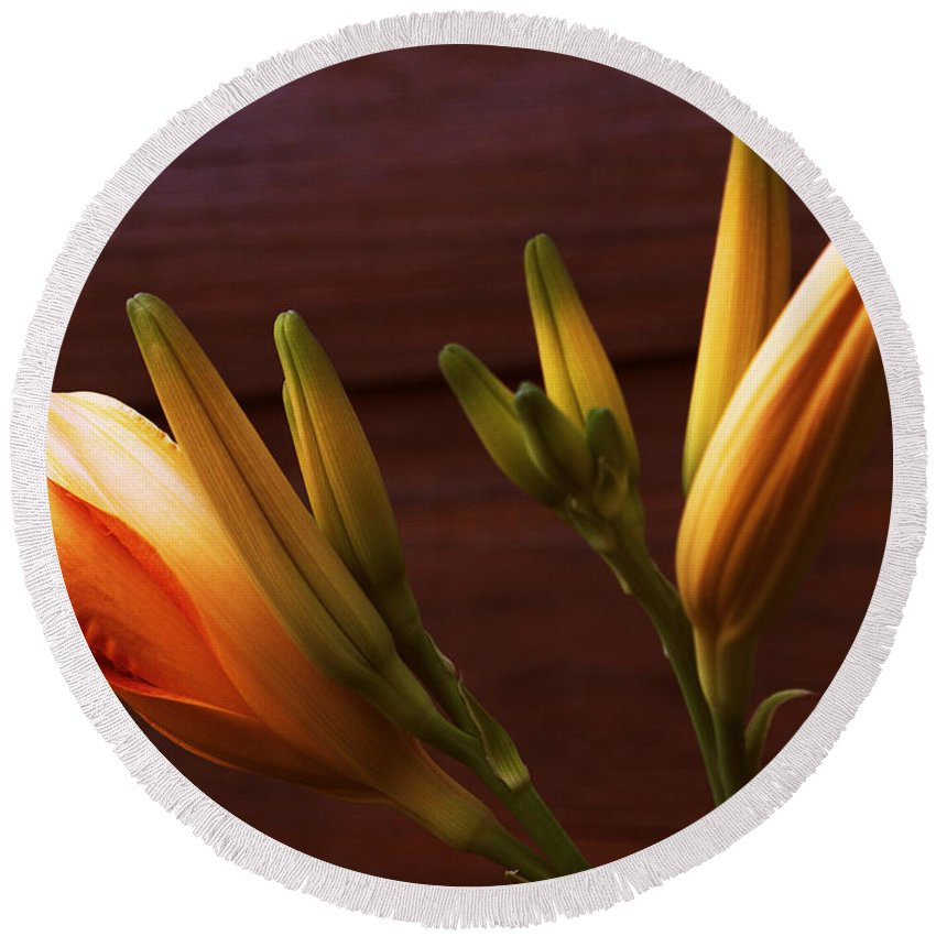 Daylily Round Beach Towel featuring the photograph Orange Daylily by Mel Hensley