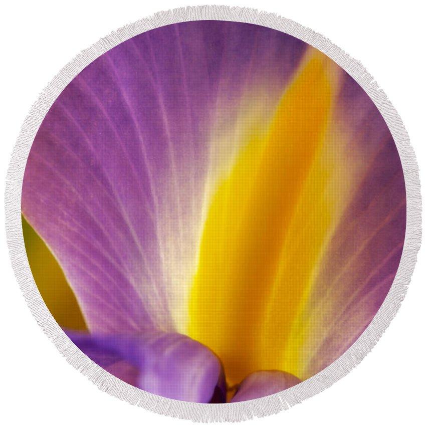 Flowers Round Beach Towel featuring the photograph Photograph Of A Dutch Iris by Perla Copernik