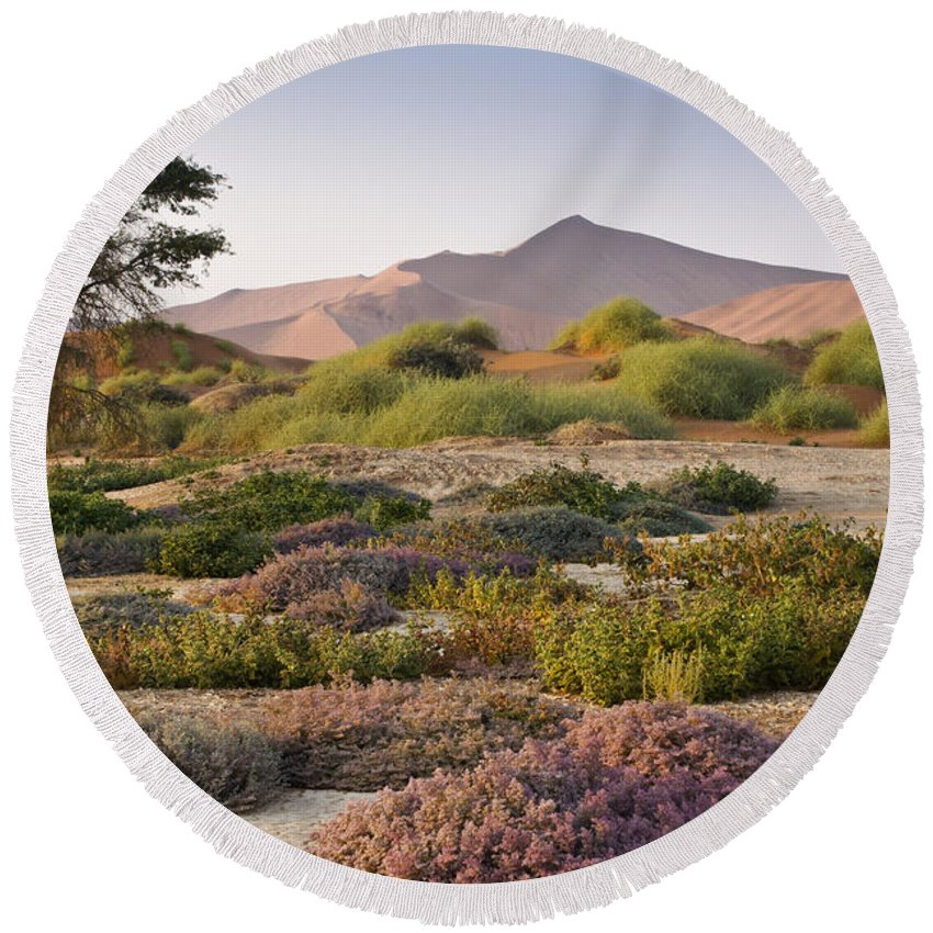 Africa Round Beach Towel featuring the photograph Wildflowers At Sossusvlei by Michele Burgess