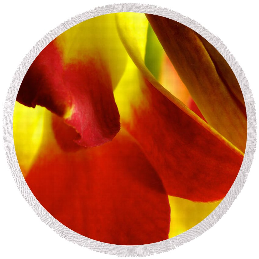 Dendrobium Round Beach Towel featuring the photograph Dendribium Malone Or Hope Orchid Flower by Perla Copernik