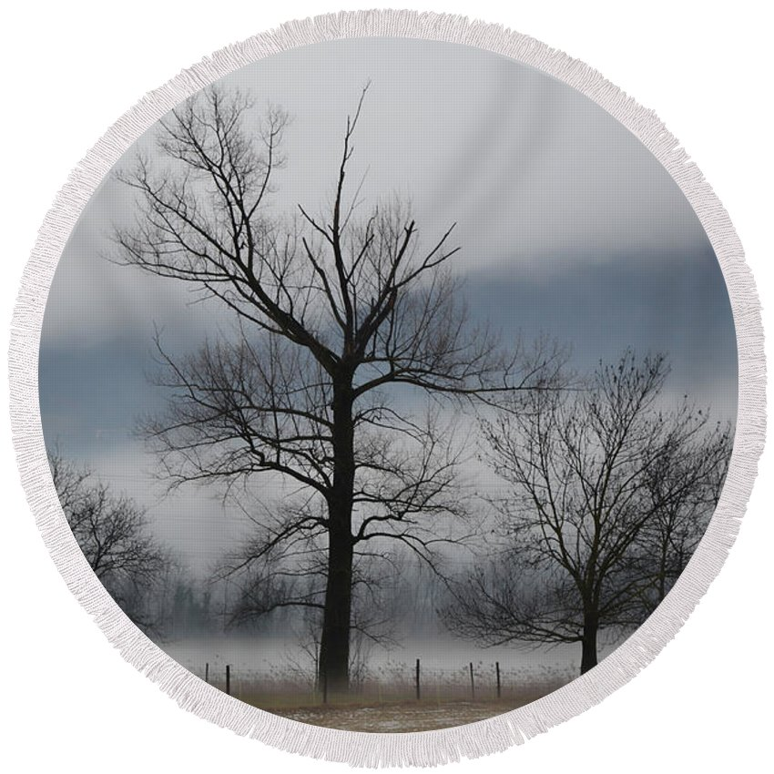 Trees Round Beach Towel featuring the photograph Trees With Fog by Mats Silvan