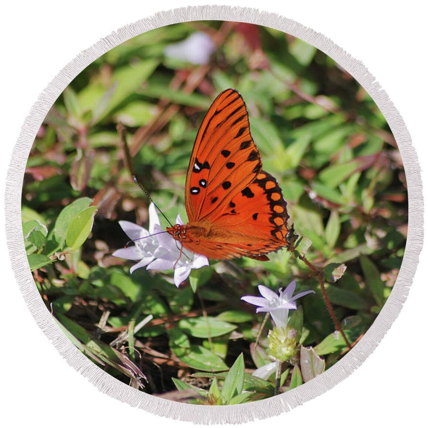 Fritillary Butterfly Round Beach Towel featuring the photograph 42- Fritillary Butterfly by Joseph Keane