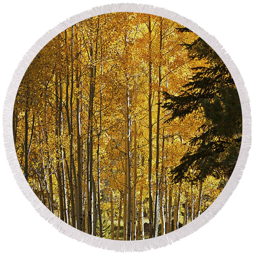 Fall Round Beach Towel featuring the photograph A Golden Trail by Phyllis Denton