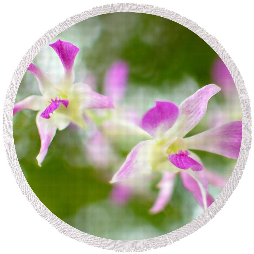 Orchid Round Beach Towel featuring the photograph A Pillow Of Winds by Floyd Menezes