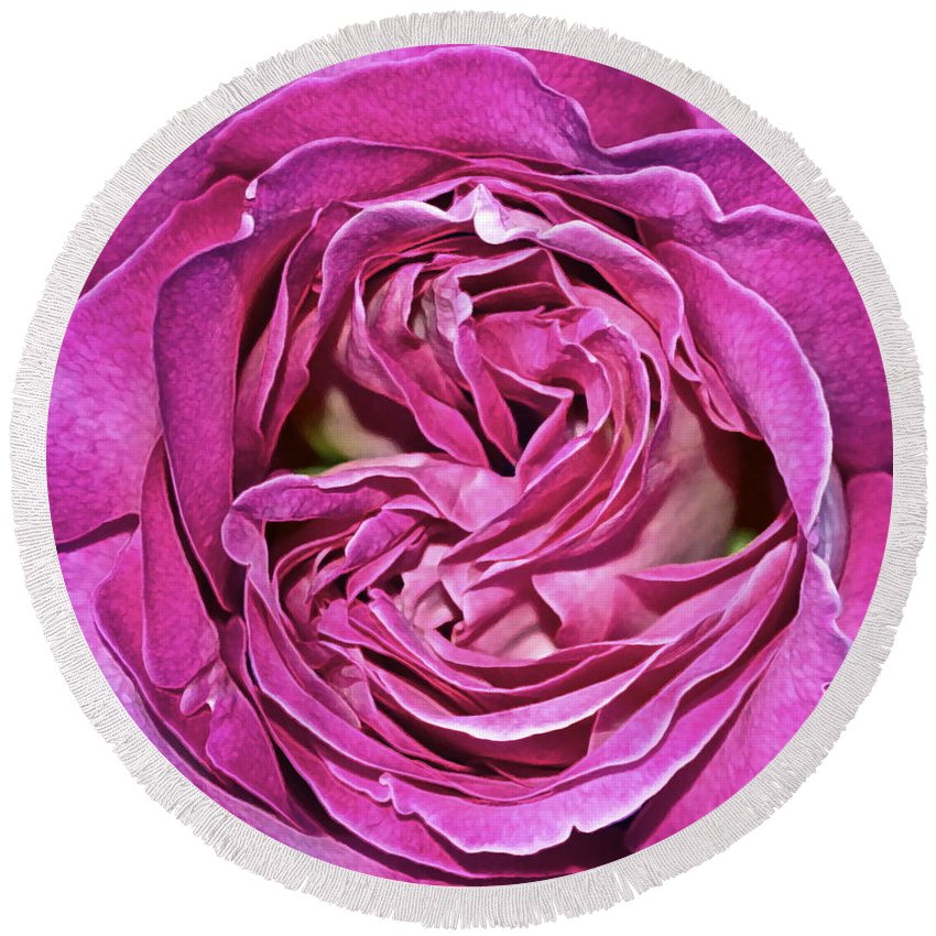 Rose Round Beach Towel featuring the photograph A Rose Is A Rose ... by Gwyn Newcombe