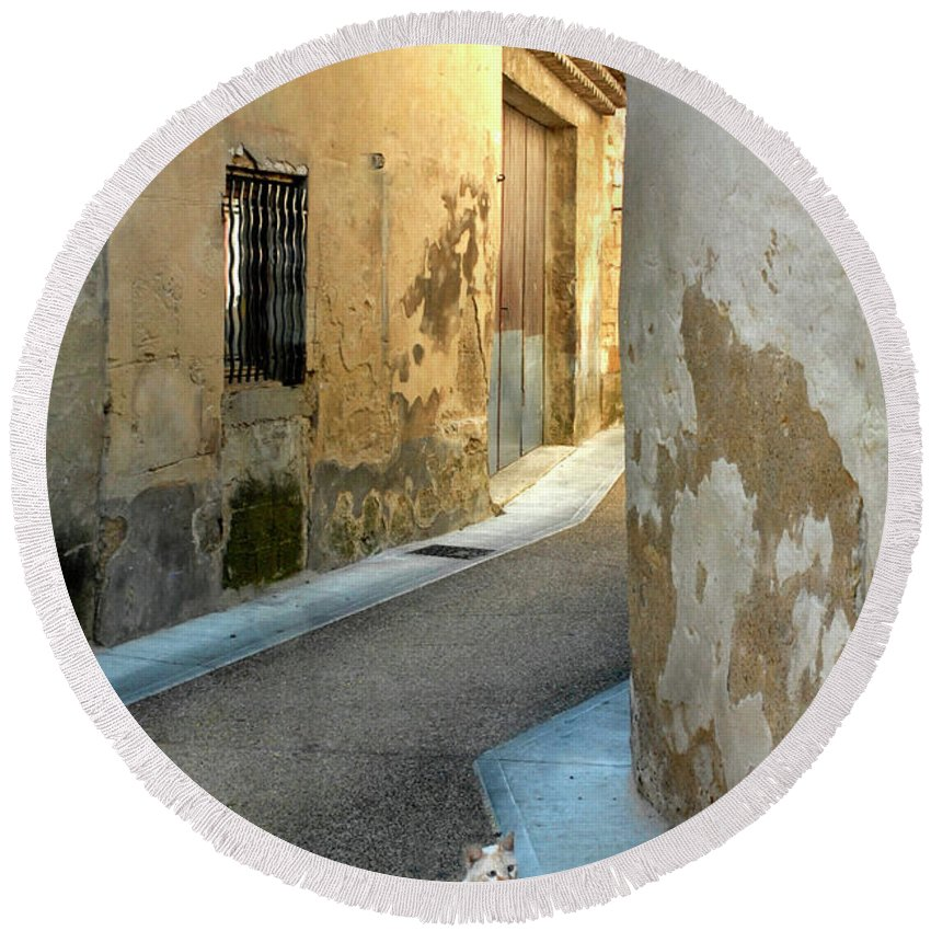 Cat Round Beach Towel featuring the photograph A Sidestreet In Provence by Dave Mills