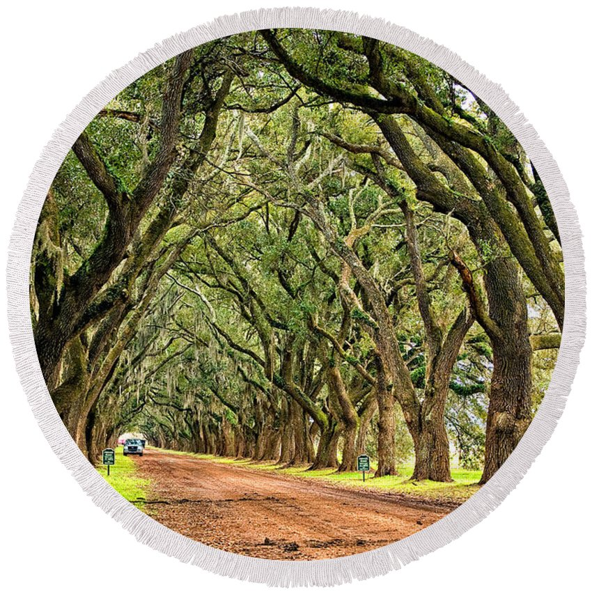 Evergreen Plantation Round Beach Towel featuring the photograph A Southern Lane by Steve Harrington