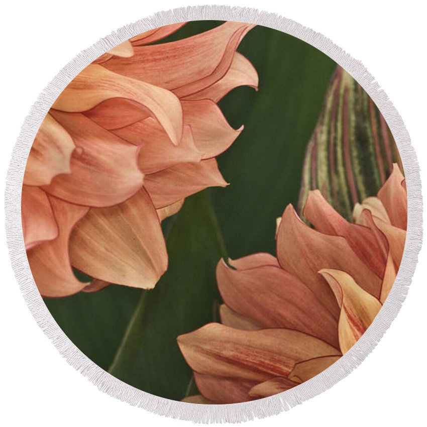 Flower Round Beach Towel featuring the photograph Adalee's Petals by Trish Tritz