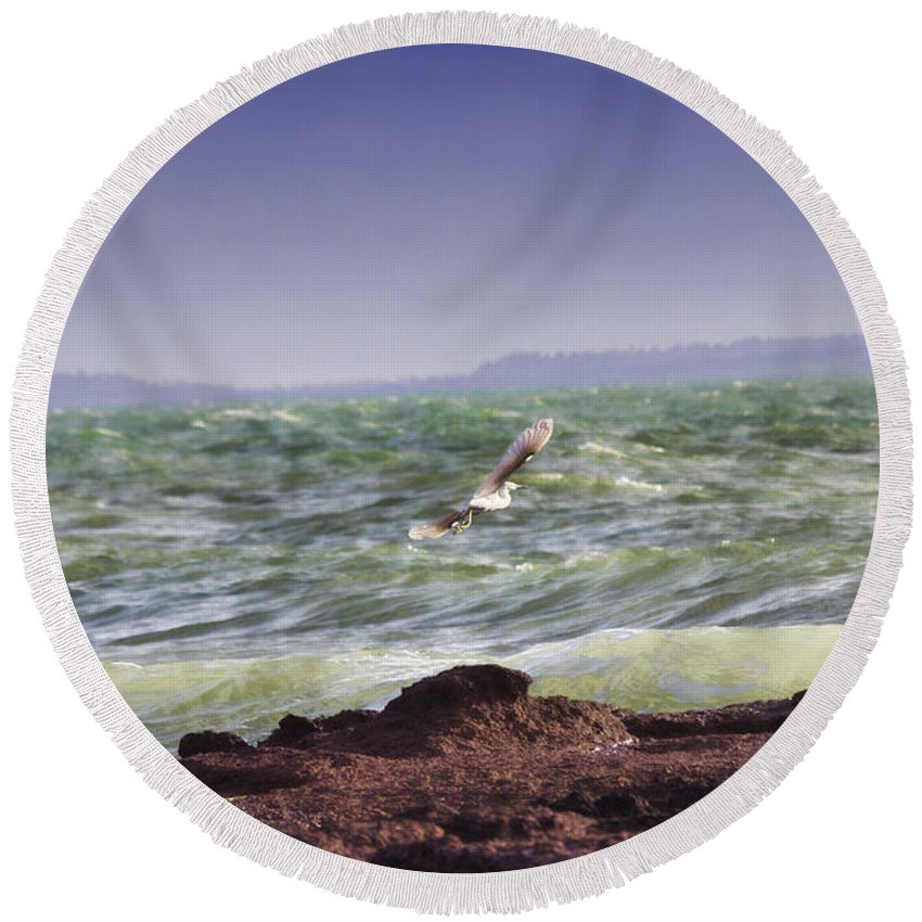 Egret In Flight Round Beach Towel featuring the photograph Against The Wind by Douglas Barnard