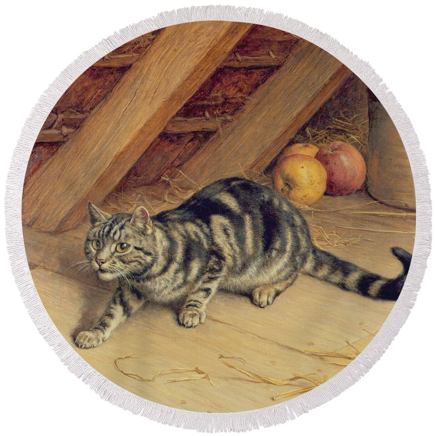 Cat; Apples; Loft Round Beach Towel featuring the painting Alert by Frank Paton