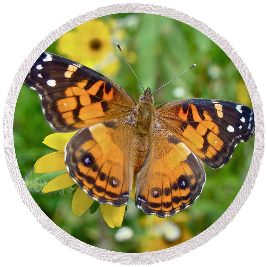 American Lady Butterfly Round Beach Towel featuring the photograph American Lady Butterfly Dorsal View - Vanessa Virginiensis by Mother Nature
