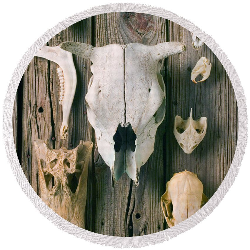 Skull Round Beach Towel featuring the photograph Animal Skulls by Garry Gay