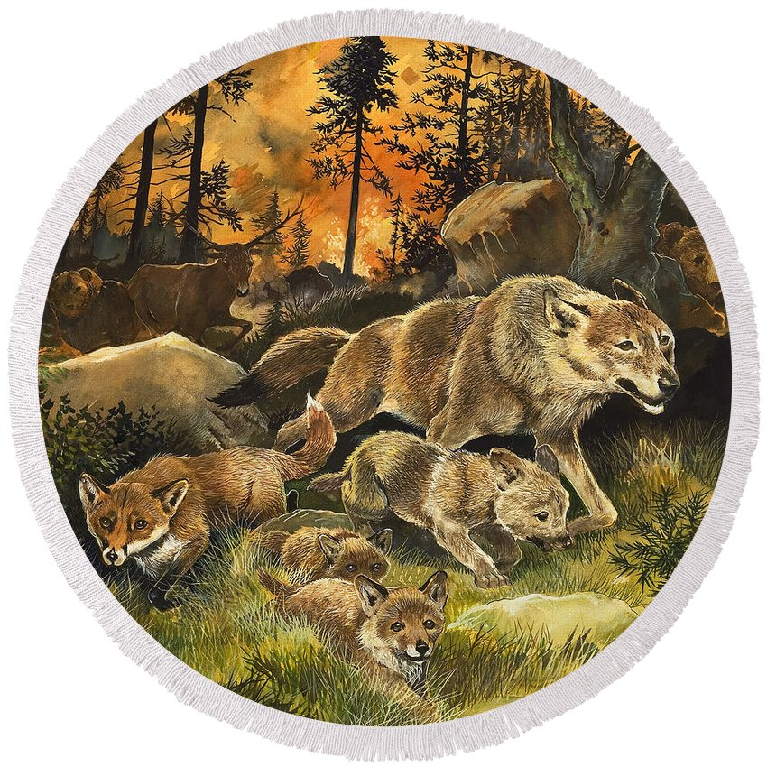 Children's Illustration; Animal; Nature; Wildlife; Frightened; Danger; Fox; Wolf; Wolves; Deer; Bear; Fuite; Feu; Foret Round Beach Towel featuring the painting Animals United In Terror As They Flee From A Forest Fire by G W Backhouse