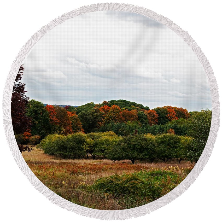 Dundas Valley Round Beach Towel featuring the photograph Apple Orchard Gone Wild by Barbara McMahon