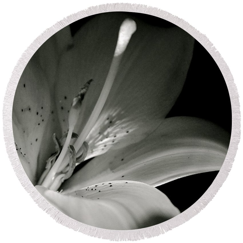 Black And White Photography Round Beach Towel featuring the photograph Asiatic Lily by Sue Stefanowicz