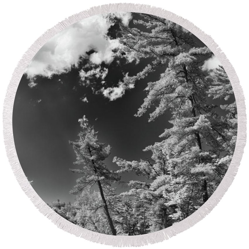 Ausable Chasm Round Beach Towel featuring the photograph Ausable Chasm 1621 by Guy Whiteley
