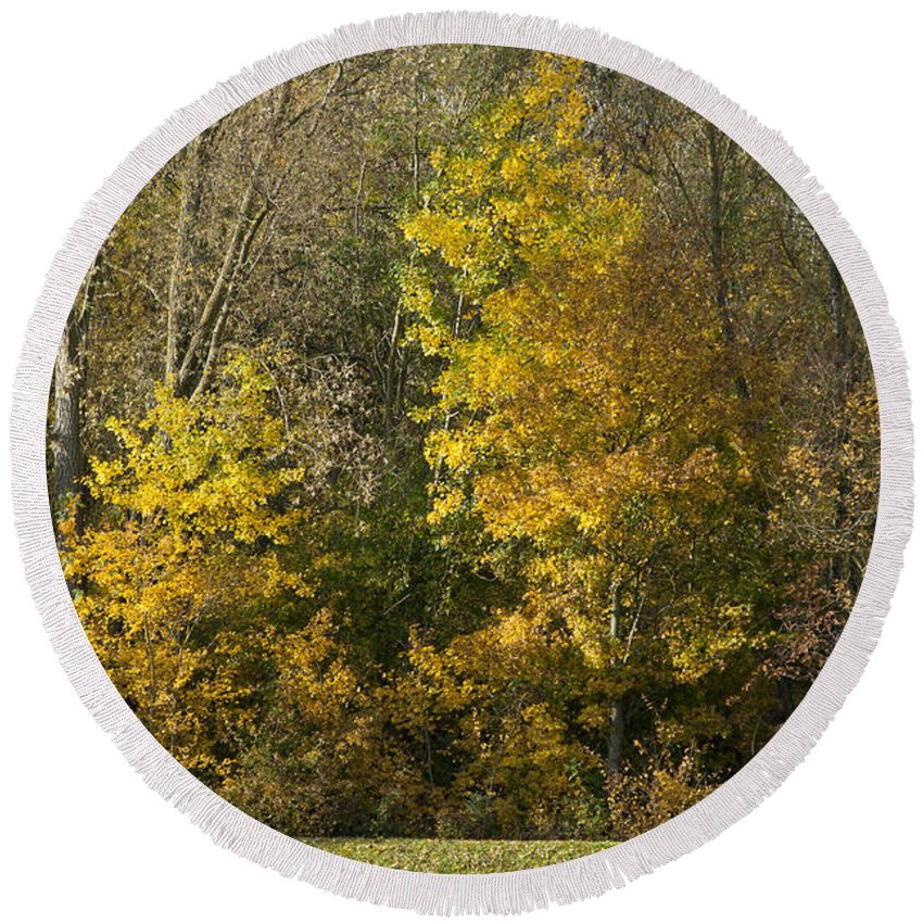 Britain Round Beach Towel featuring the photograph Autumn Colours by Andrew Michael
