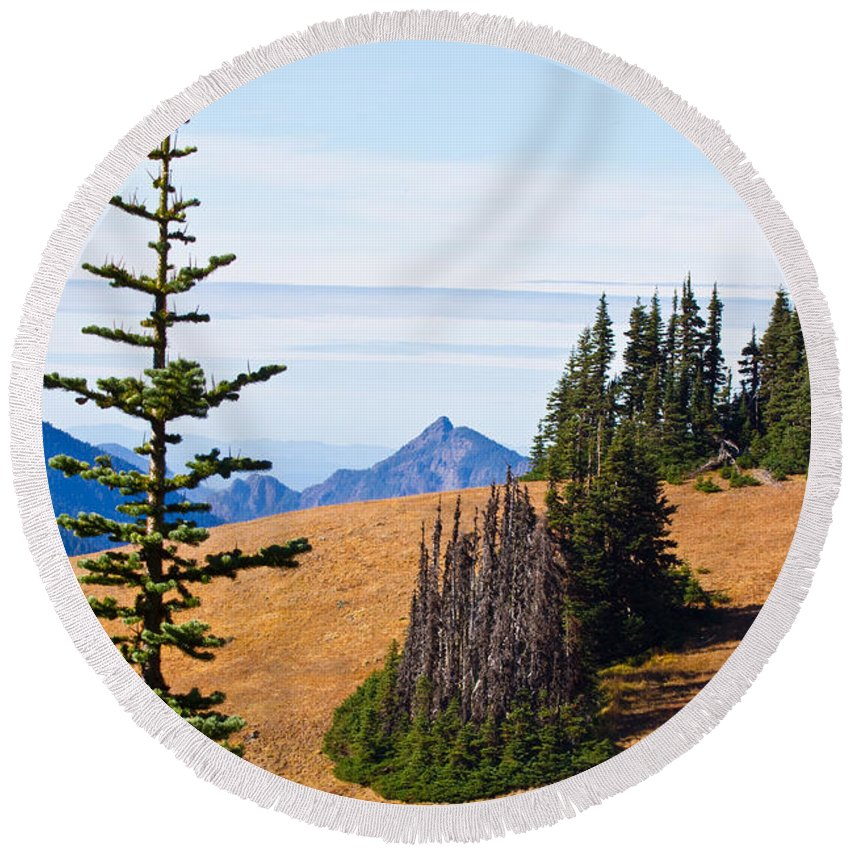 Autumn Round Beach Towel featuring the photograph Autumn In The Olympics by Marie Jamieson