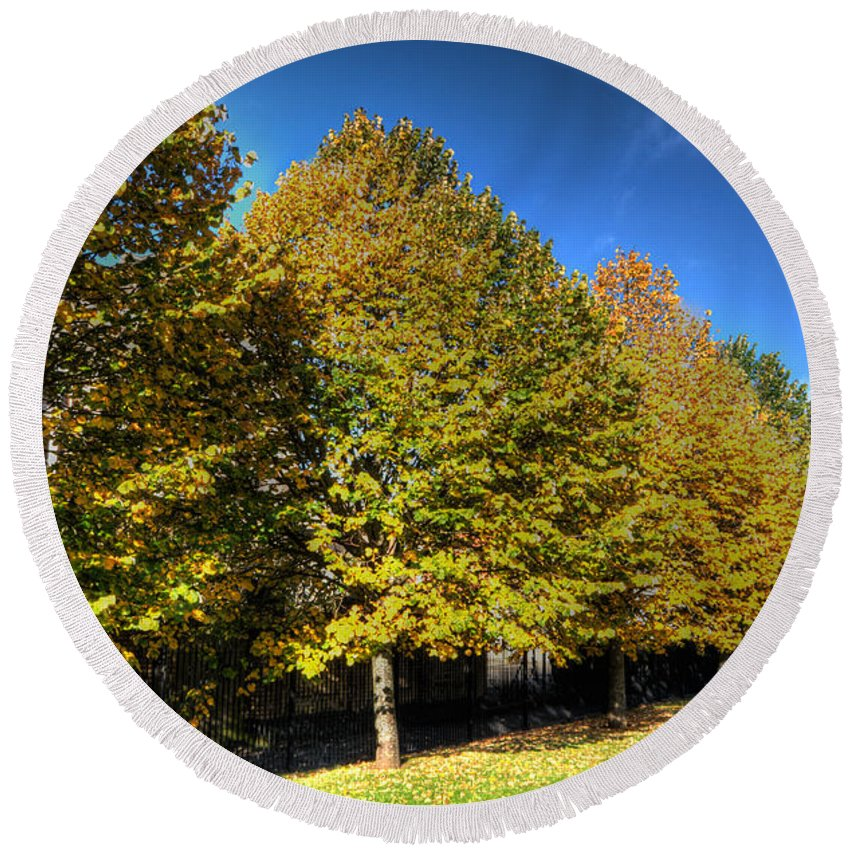 Autumn Trees Round Beach Towel featuring the photograph Autumn Row by Steve Purnell