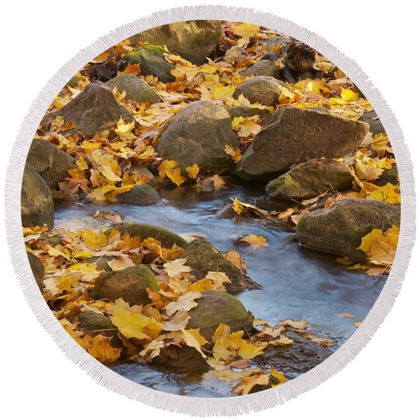 Autumn Round Beach Towel featuring the photograph Autumn Slipping Away 0437 by Michael Peychich