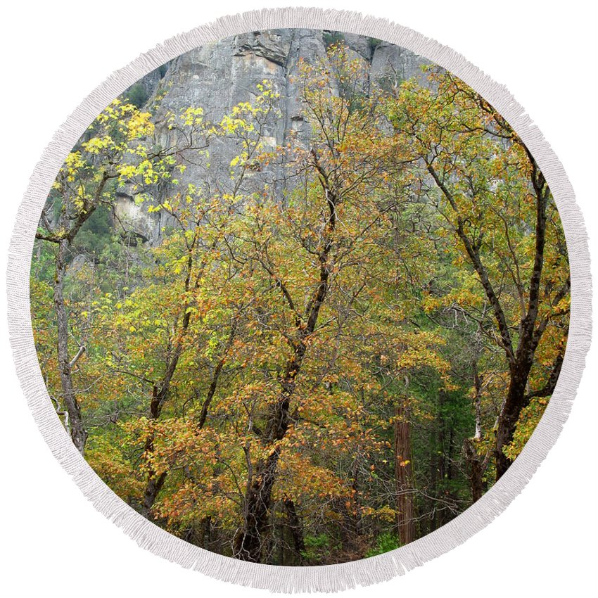 Trees Round Beach Towel featuring the photograph Autumn Trees And El Capitan In Morning Light by Greg Matchick