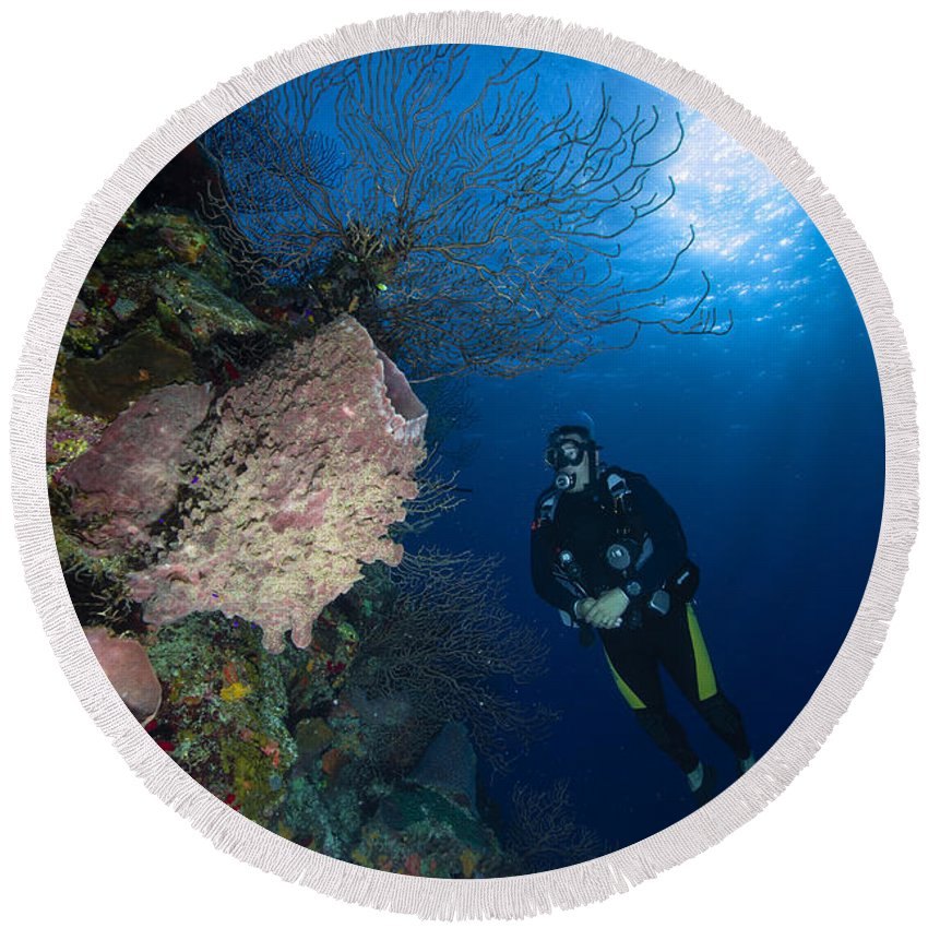 Diver Round Beach Towel featuring the photograph Barrel Sponge And Diver, Belize by Todd Winner