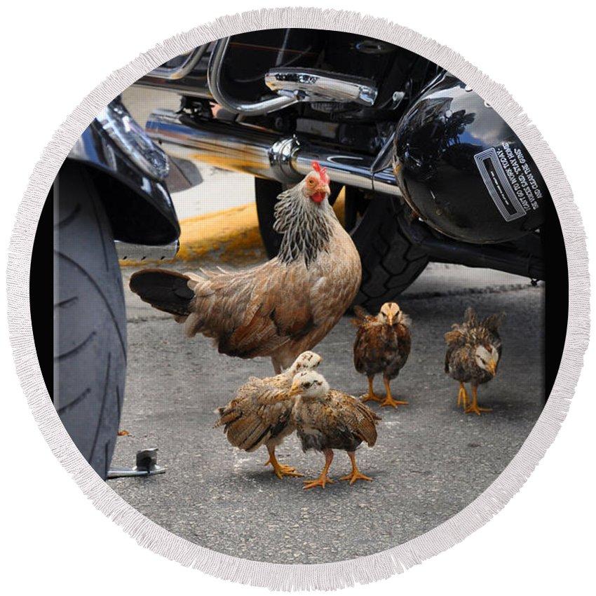 Chickens Round Beach Towel featuring the photograph Biker Chix by Christine Stonebridge