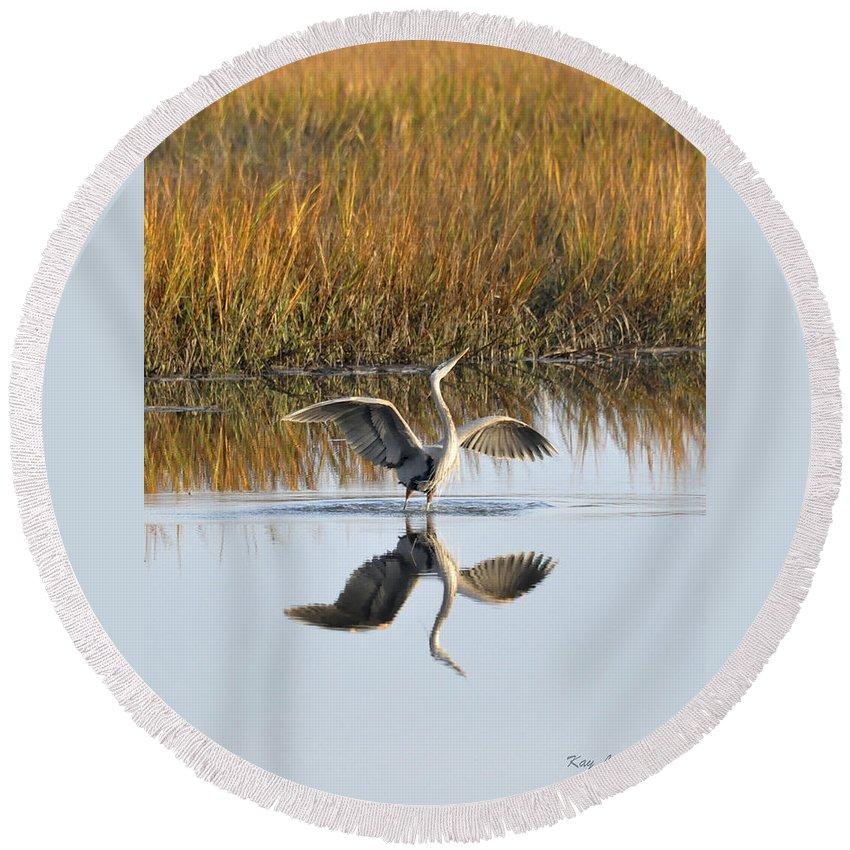Great Blue Heron Round Beach Towel featuring the photograph Bird Dance by Kay Lovingood
