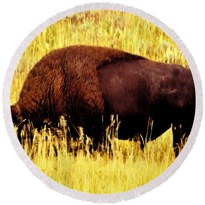 Art Round Beach Towel featuring the painting Bison In Field by David Lee Thompson