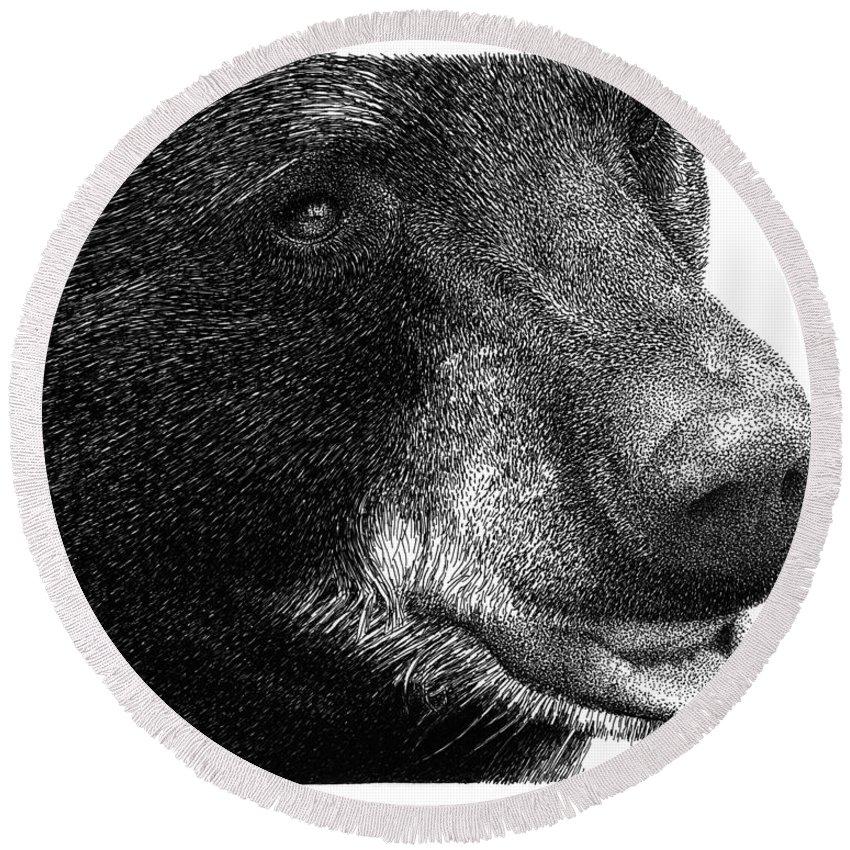 Black Bear Round Beach Towel featuring the drawing Black Bear by Scott Woyak