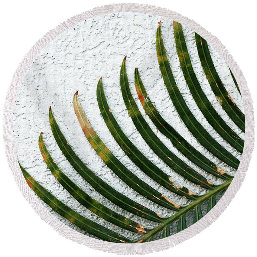 Blades Round Beach Towel featuring the photograph Bladed Leaf Against Stucco Wall by Mike Nellums