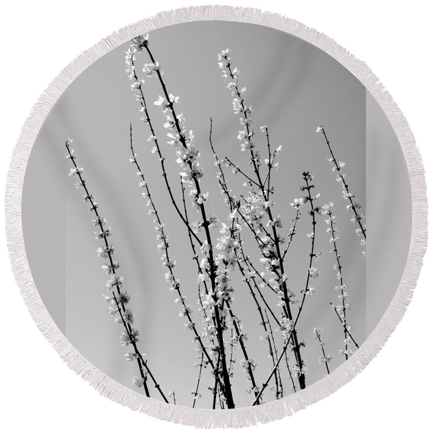 Nature Round Beach Towel featuring the photograph Blooming Twigs by Deborah Crew-Johnson