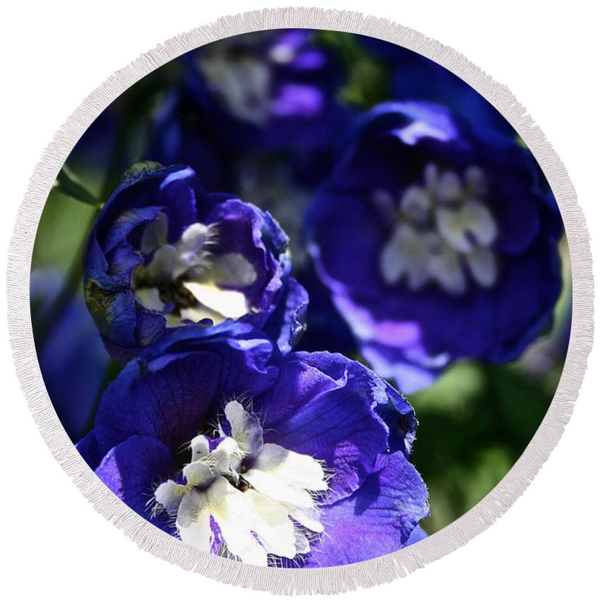 Garden Round Beach Towel featuring the photograph Blue Blossoms by Susan Herber