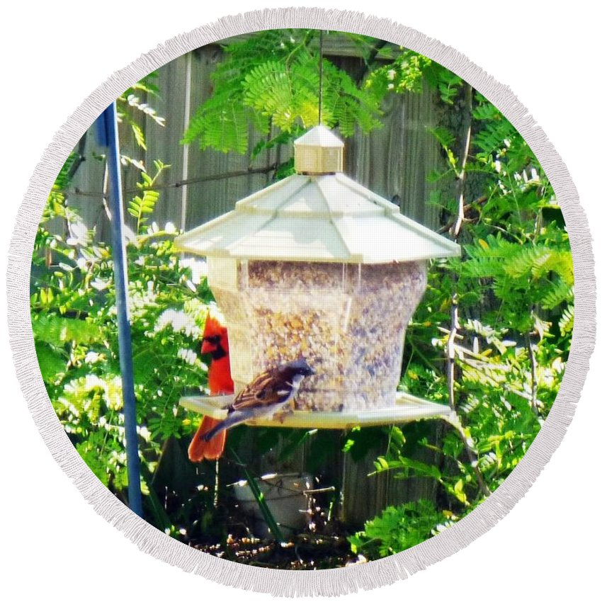 Cardinal Round Beach Towel featuring the photograph Breakfast by Alys Caviness-Gober