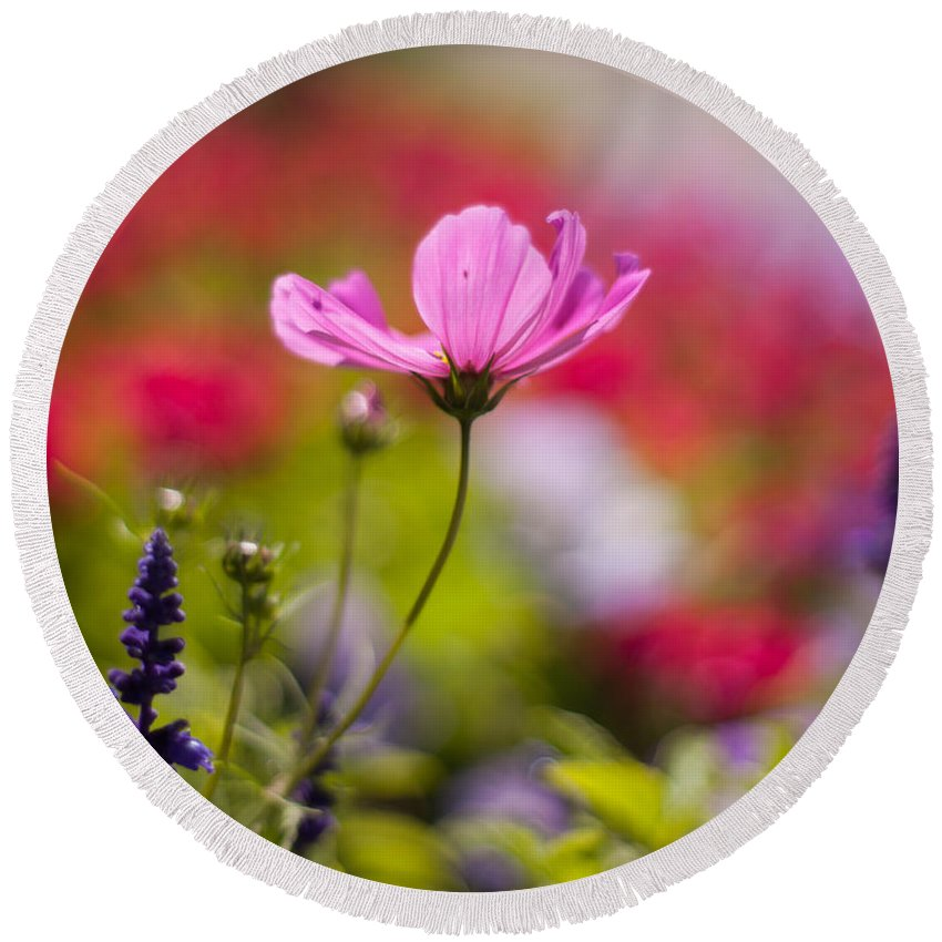 Flower Round Beach Towel featuring the photograph Brilliant Petals by Mike Reid