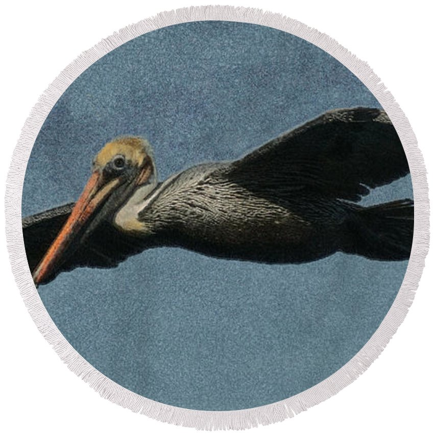 Pelican Round Beach Towel featuring the digital art Brown Pelican Painterly by Ernie Echols