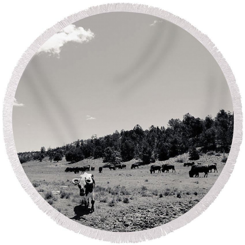 Buffalo Round Beach Towel featuring the photograph Bull With Buffalo by Julie Niemela