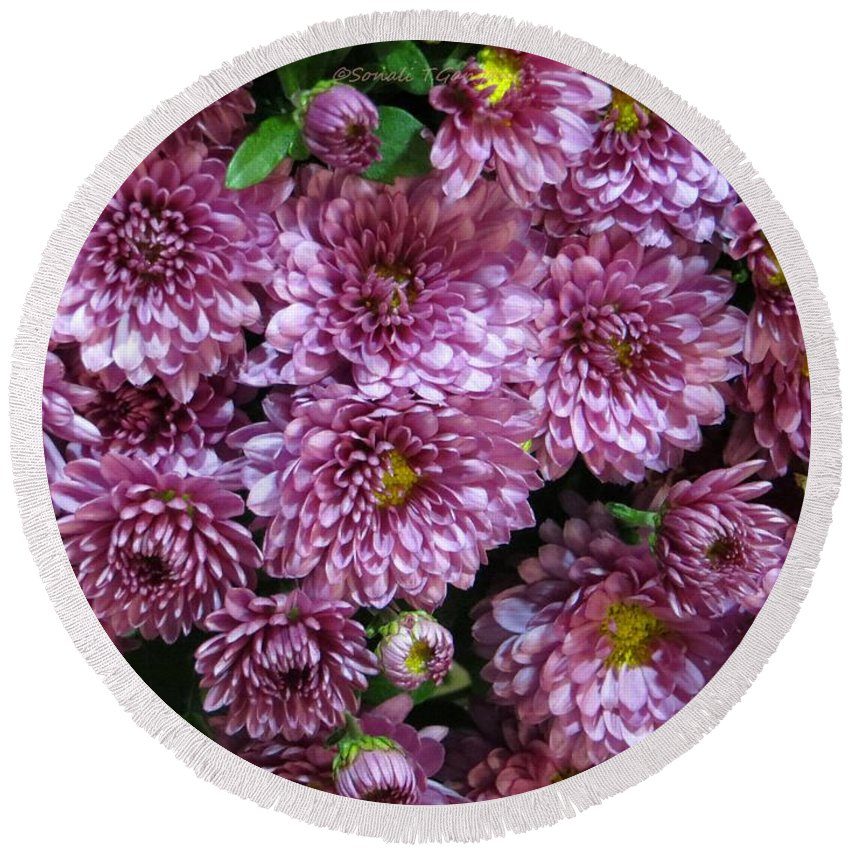 Pretty Chrysanths Round Beach Towel featuring the photograph Bunch Of Chrysanths by Sonali Gangane