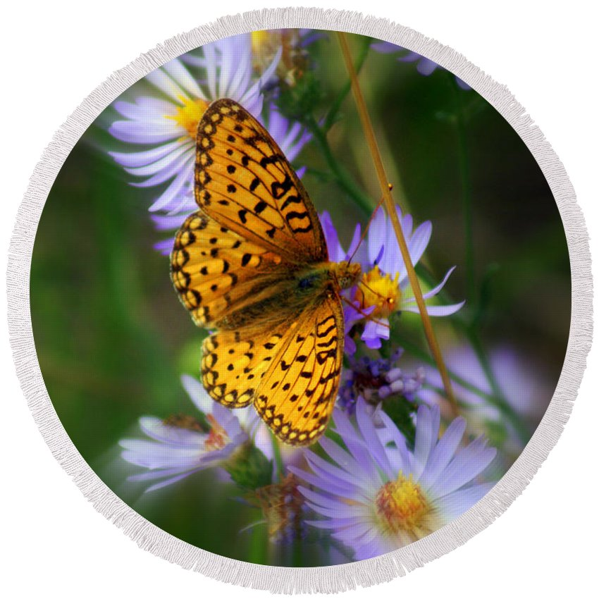 Butterfly Round Beach Towel featuring the photograph Butterfly Blur by Marty Koch