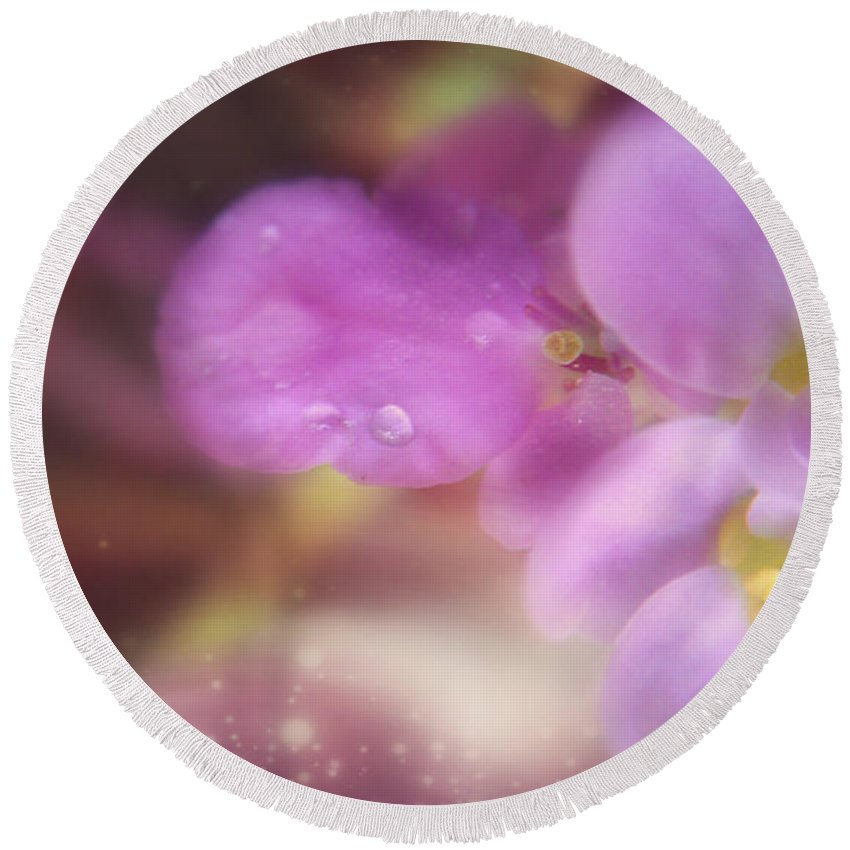 Macro Round Beach Towel featuring the photograph Butterfly Pea Wildflowers by Peggy Franz