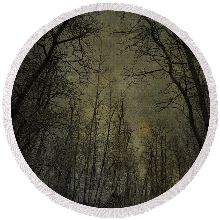 Jerry Cordeiro Photographs Round Beach Towel featuring the photograph Cabin Fever by The Artist Project