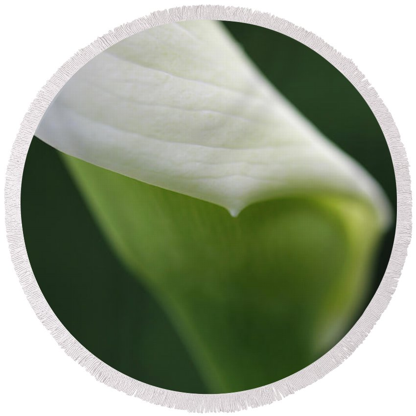 Calla Round Beach Towel featuring the photograph Calla Lily Flower Petal Macro by Jennie Marie Schell