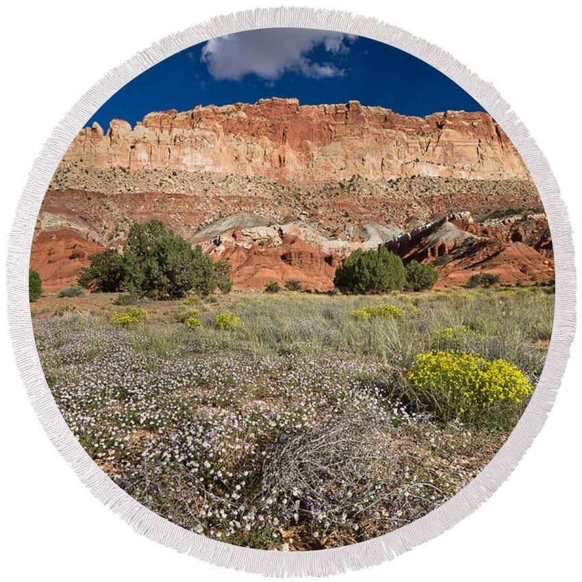 Desert Round Beach Towel featuring the photograph Capitol Reef Autumn Wildflowers by Greg Nyquist