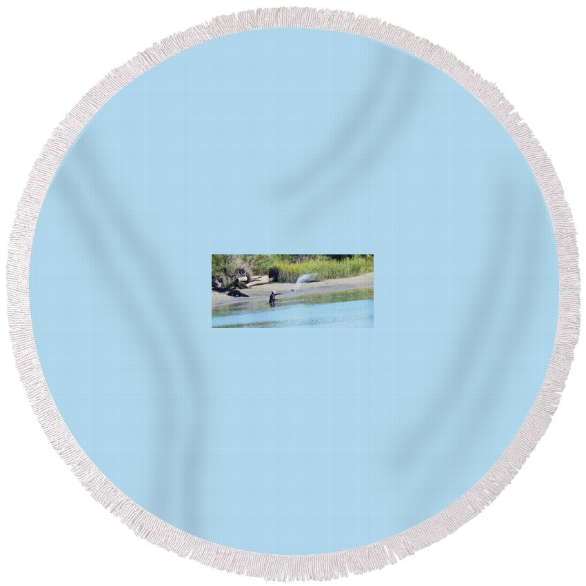 Cast Netting Round Beach Towel featuring the photograph Casting For Shrimp At Hunting Island by Patricia Greer