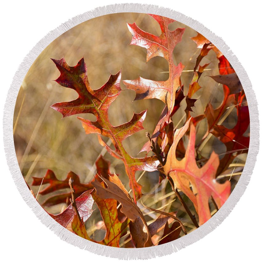 Orange Leaves Round Beach Towel featuring the photograph Changing Colors by Carolyn Marshall
