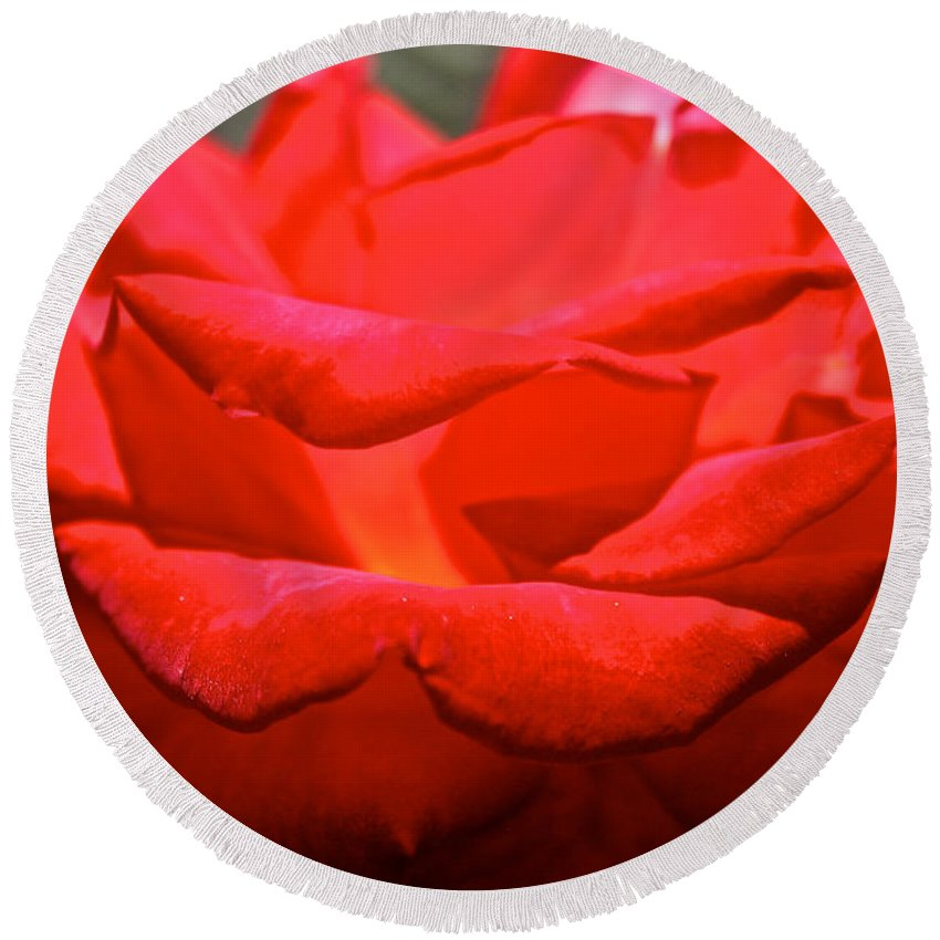 Flower Round Beach Towel featuring the photograph Cherry Red Rose by Susan Herber