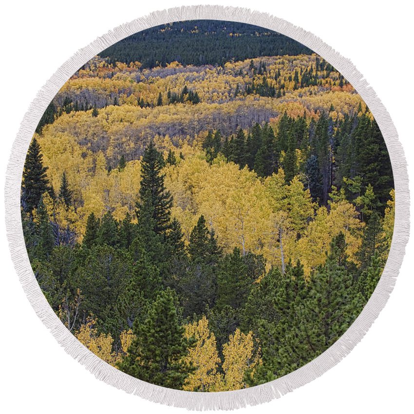 Colorful Round Beach Towel featuring the photograph Colorado Rocky Mountain Autumn Season High by James BO Insogna