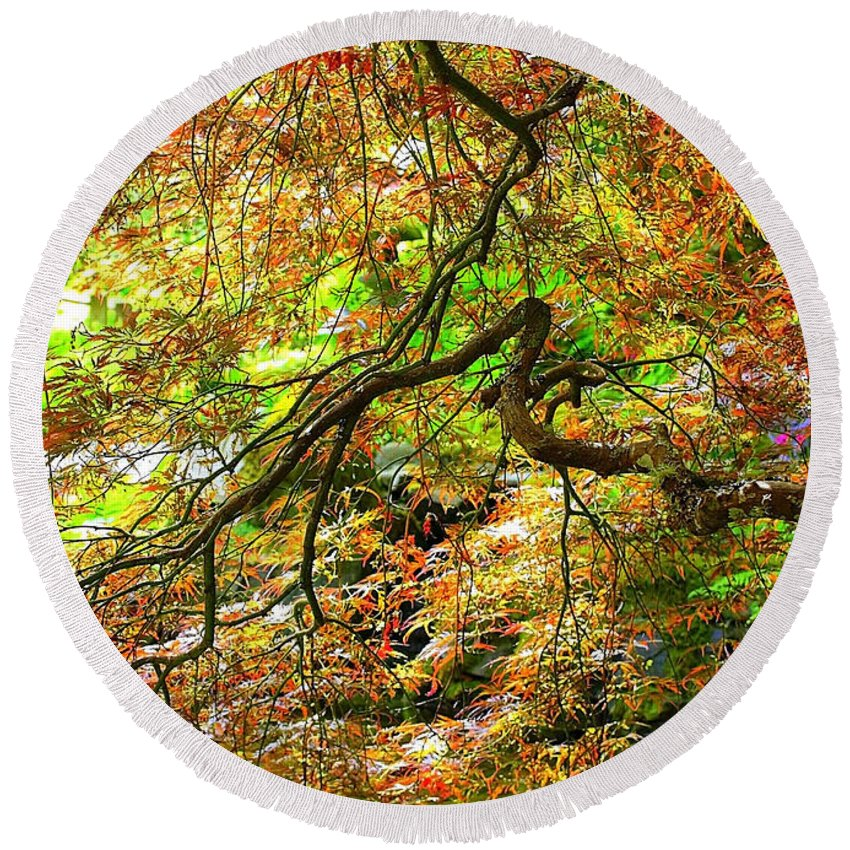 Spring Trees Round Beach Towel featuring the photograph Colorful Maple Leaves by Carol Groenen