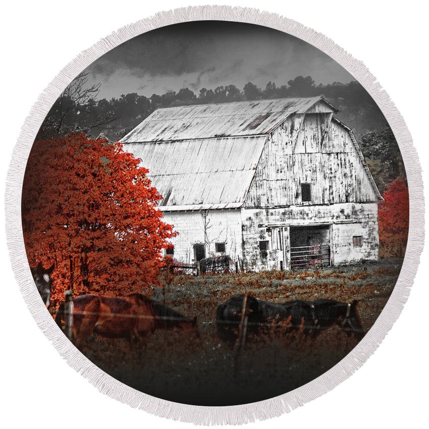 Barn Round Beach Towel featuring the photograph Coming In by Randall Branham
